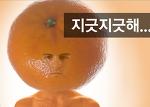 과일에 사람얼굴 합성