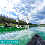 캐나다 유콘강 카누 여행 ♥ Yukon River Canoeing