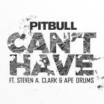 Pitbull - Can't have 가사 해석 핏불 듣기 뮤비