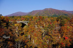이와테현의 가을 풍경