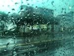 비 오는 날 더 아름다운 제주풍경, '비 내리던 제주의 하루'