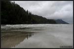 [밴쿠버 아일랜드] 케이프 스캇 주립공원