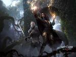 ウィッチャー3 ワイルドハント (The Witcher3 Wild Hunt) 壁紙 画像 (6)