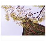 #03. 수원화성행궁