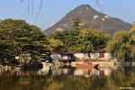 늦가을 경복궁 | 서울 가볼만한곳, 단풍명소
