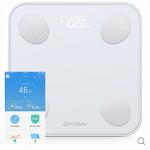 YUNMAI Mini 2 Balance 윈마이 미니2 밸런스 BMI 측정기 및 체중계 세일