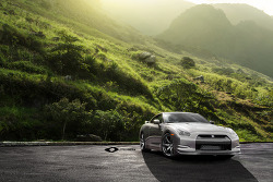 2010 Nissan GT-R Stage 4  by Pepper Perfect