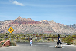 2008. May : Red rock canyon, 라스베가스를 떠나며 . . . - 여행 여섯째날