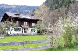 스위스의 시골집에 사는 사람들