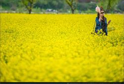또다시.. 봄 - (3)