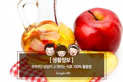 [생활정보] 주부9단 쏭맘이 소개하는 식초 100% 활용법