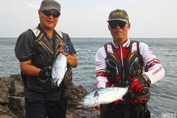제주도 범섬 낚시(2), 벵에돔 낚시 중 점다랑어의 습격