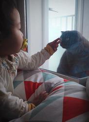 시루와 영아산통