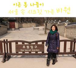 [봄나들이] 2박 3일 서울여행, 비원