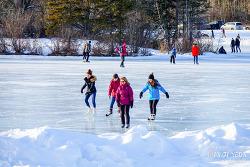 캐나다 알버타 애드먼튼 겨울 축제 이야기, 실버 스케이트 페스티벌 Silver Skate Festival