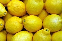 몸에 쌓인 독소를 제거해 주는 10가지 식품
