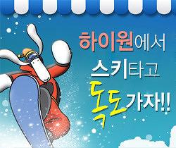 하이원에서 스키타고 독도 가자!