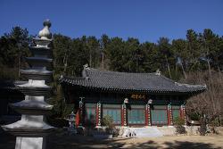가야불교의 본산 신어산 자락 해광사