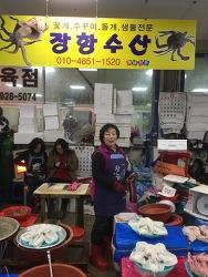 서천특화시장 장항수산 소개 - 주꾸미, 갑오징어, 꽃게, 돌게 등 생물 전문