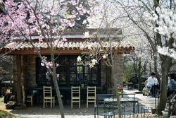 봄날의 아미미술관