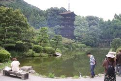 일본 야마구치 여행 일본의 3대 탑 루리코지 5중탑