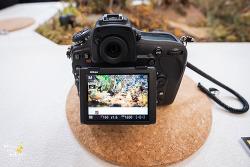 Nikon d850 체험기