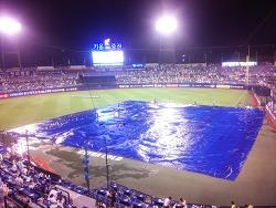 비가 와도 야구관람 0811