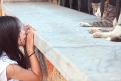 그리스 아테네 여행(15), 아테네에서 보낸 달콤한 하루