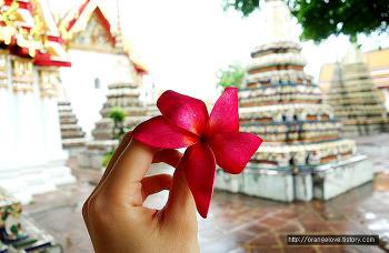 두번째 방콕 여행