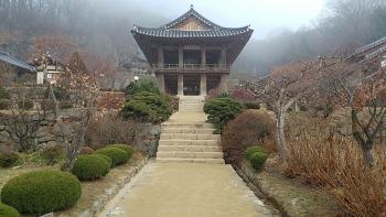 [경북 영주/봉화] 무섬마을, 소강고택, 부석사