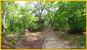 <서울 가볼만한 곳> 부암동 백사실 계곡 : 도심속에 숨어있는 보석
