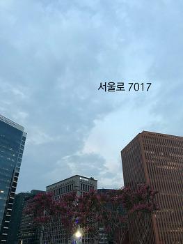 아이와 함께 가볼만한곳 서울로 7017을 걷다 왔어요.