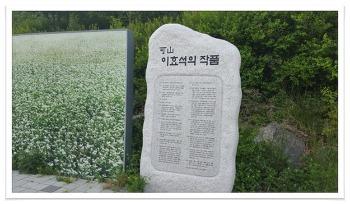 봉평맛집 고향막국수집(2탄) 근처 풍성한 볼거리 알려드려요.
