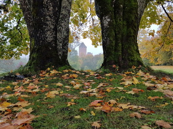 투라이다, 신의 정원에도 찾아온 가을 단풍