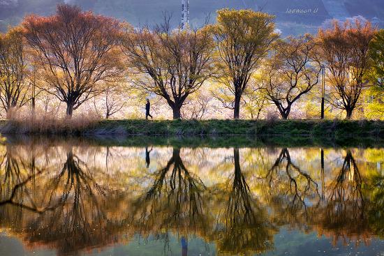 봄의 반영