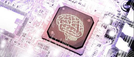 인공지능과 인간지능은 얼마나 닮았을까