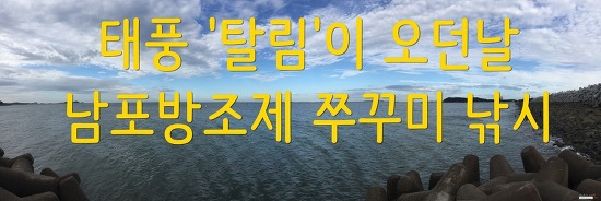 태풍 '탈림'이 지나가던날 쭈꾸미낚시-남포방조제 (2)