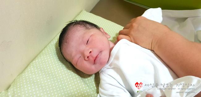 [7] 드디어 출산. 새로운 가족 체리.