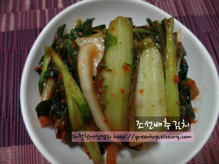 간단하고 맛있는 봄찬 47 , 조선배추김치~