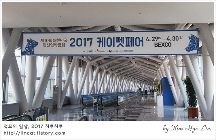 [적묘의 부산]벡스코,2017 케이펫페어,반려동물산업박람회,관람후기.제2전시장