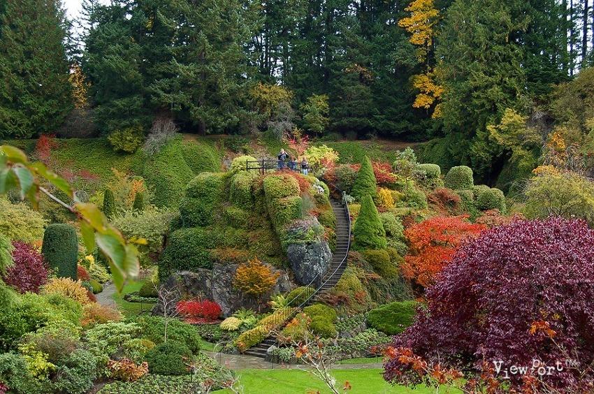 이제 봄인데 가을을 그리워 하네요..부차트가든 캐나다 Butchart Gardens Victoria Canada