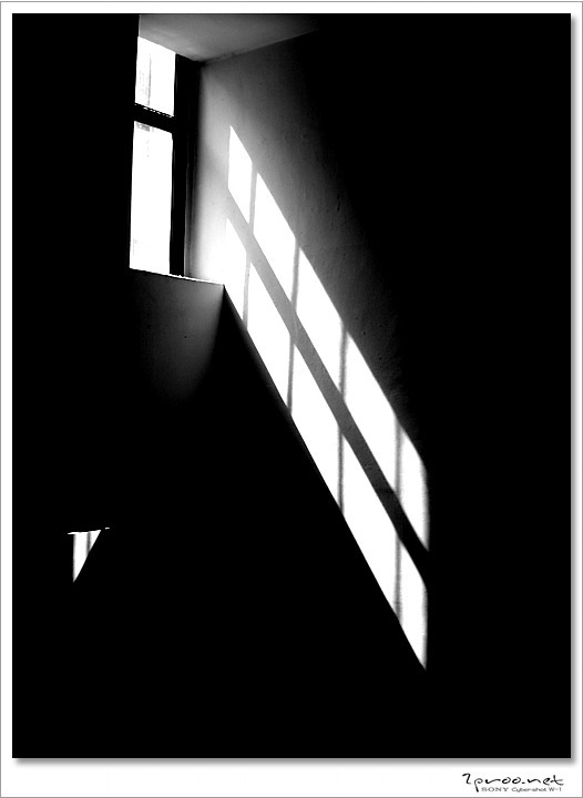 빛과 그림자