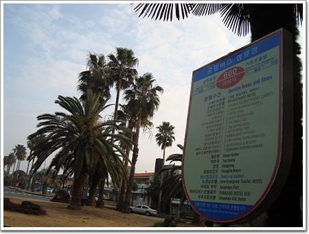 여미지 버스 표지판