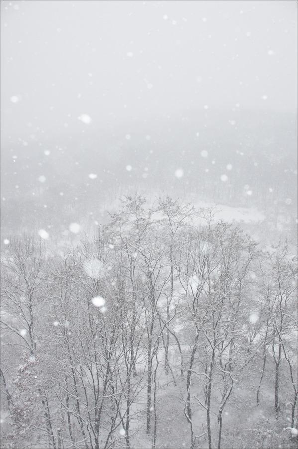 겨울...