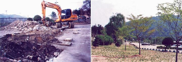 홍천과학고 2003년 학교숲 조성