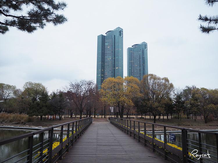서울숲 수변공원 길