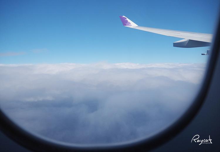 하늘위에서