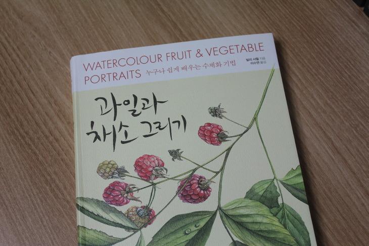과일과 채소 그리기 책 리뷰 누구나 쉽게 배우는 수채화 기법 취미생활 그림
