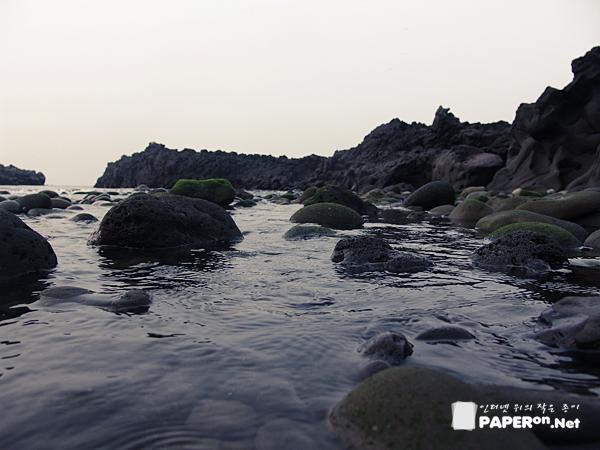 바닷물과 민물이 만나는 몽돌 해안가에 이끼낀 바위들