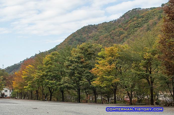 남이자연휴양림 제3 캠핑장